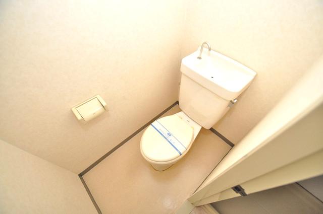 グランドメゾン樋口 清潔感たっぷりのトイレです。入るとホッとする、そんな空間。