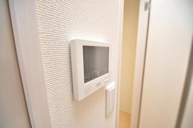フジパレス高井田西Ⅱ番館 TVモニターホンは必須ですね。扉は誰か確認してから開けて下さいね