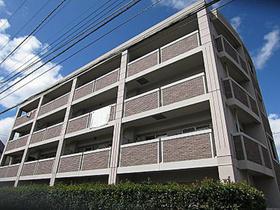 中野島駅 徒歩13分の外観画像