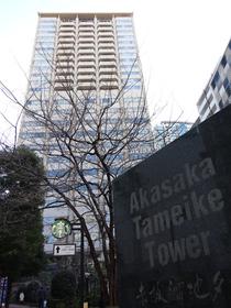 赤坂溜池タワーレジデンスその他