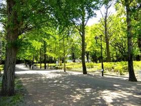 都立城北中央公園(春~夏)