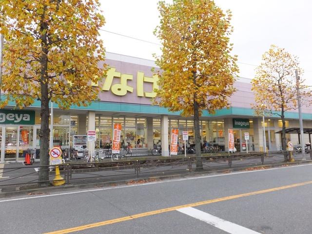 スカイコート日吉2[周辺施設]スーパー