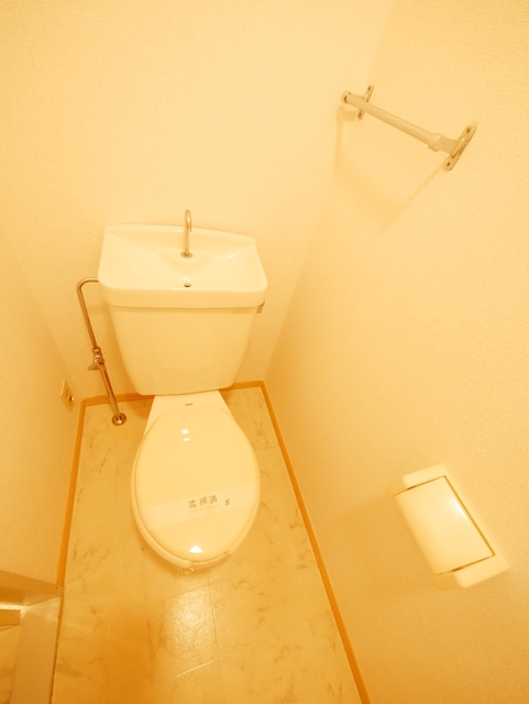 グリーンゲイブルズハウストイレ