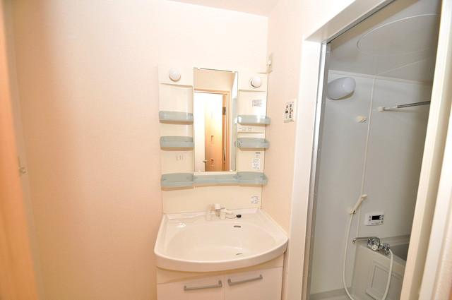 カーサ・エクレール A棟 豪華な洗面台はもちろんシャンプードレッサー完備です。