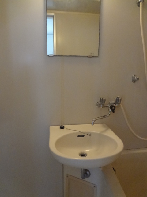 プラムハウス洗面所