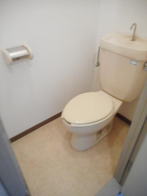 パラシオン・コチョートイレ