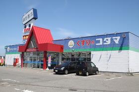 https://image.rentersnet.jp/37072215642cb446ccfbc383a84d83cc_property_picture_955_large.jpg_cap_クスリのコダマ新発田新栄町店