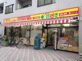 どらっぐぱぱす東向島店