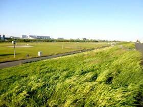 荒川戸田橋緑地(河川敷)
