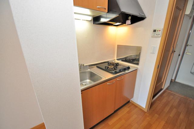 シムリーミナⅡ 単身のお部屋には珍しい豪華なシステムキッチン完備です。