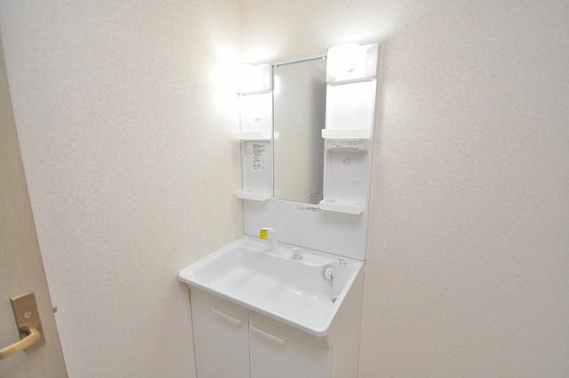 ローズガーデンCOMO 人気の独立洗面所はゆったりと余裕のある広さです。