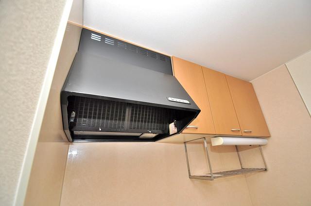 メゾンドゥエスポワール キッチン棚も付いていて食器収納も困りませんね。