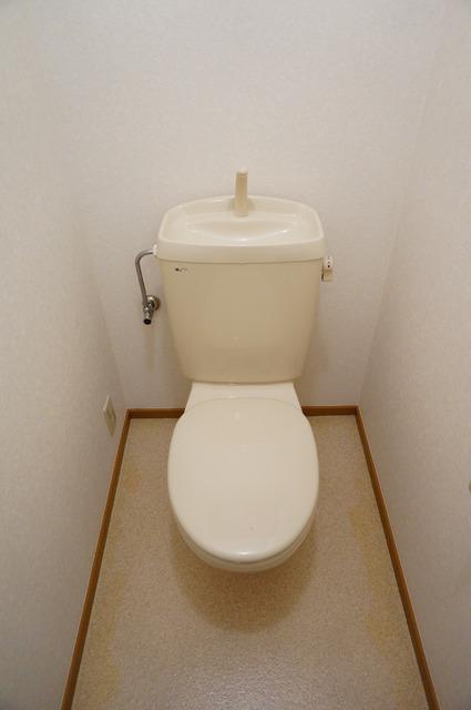ディアナコ-トトイレ
