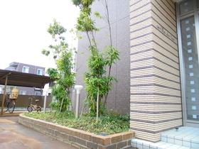 https://image.rentersnet.jp/55b3404e-8255-4d11-96b7-b5ba98e3d332_property_picture_959_large.jpg_cap_植栽