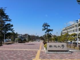 https://image.rentersnet.jp/55d3afa6a59f26fd557b4903dd192162_property_picture_956_large.jpg_cap_新潟大学