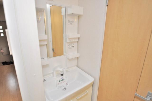 カーサ・エテルナ 豪華な洗面台はもちろんシャンプードレッサー完備です。