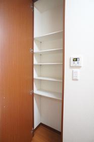 カミーリア 205号室
