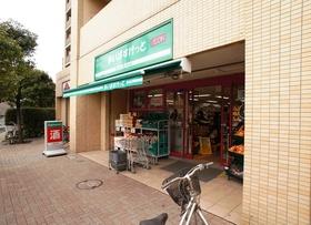 https://image.rentersnet.jp/61589791-8c45-4fa4-87a1-8d70683f6d29_property_picture_962_large.jpg_cap_まいばすけっと小島新田店