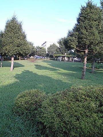 REVERAFFINE(ペット共生)[周辺施設]公園