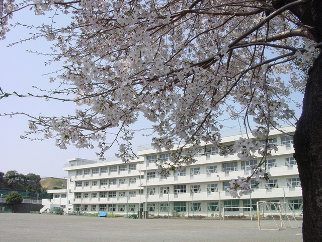 ディアコート海老名[周辺施設]小学校