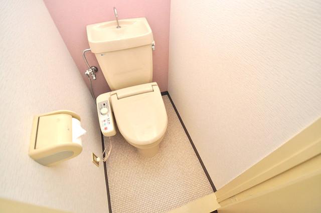 TSUJIHANAビルディング キレイに清掃されたトイレは清潔感があり気分もよくなります。