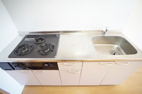 https://image.rentersnet.jp/6a98911c0e391f9a2f62395b8f639096_property_picture_956_large.jpg_cap_システムキッチン。3口コンロに魚焼きグリル付きです。
