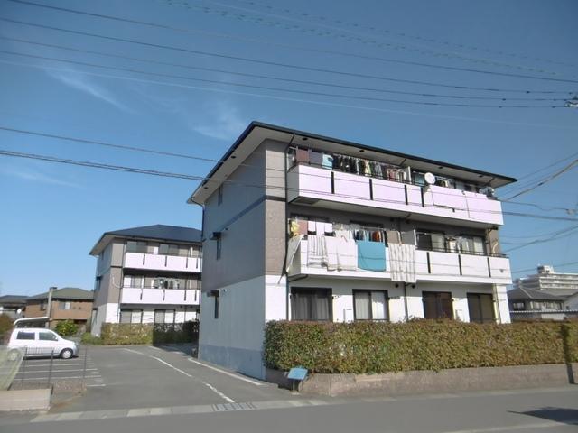 ハイカムール山本
