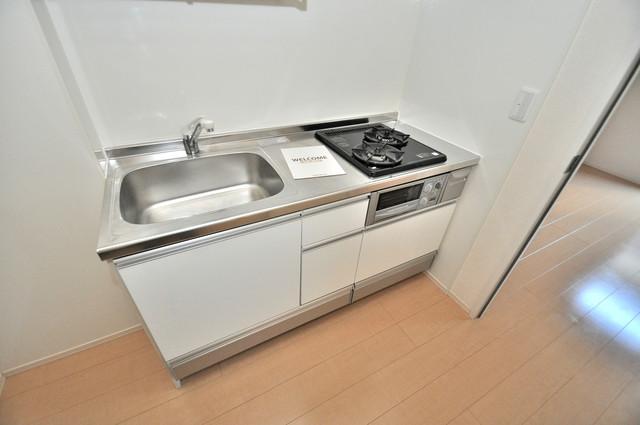 セジュールオッツ八戸ノ里 お料理好きにはうれしい設備。豪華なシステムキッチンですよ。