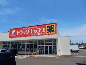 https://image.rentersnet.jp/73996d82-a843-486c-ac18-f6837a676ea2_property_picture_953_large.jpg_cap_ドラッグトップス北城店