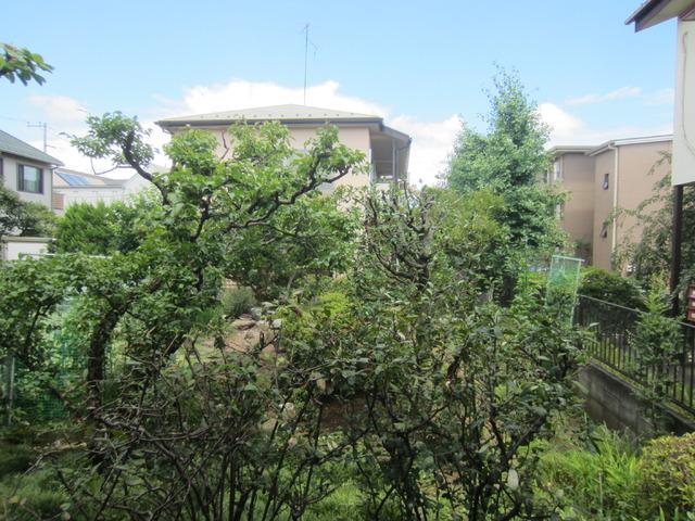 エクセリア景色