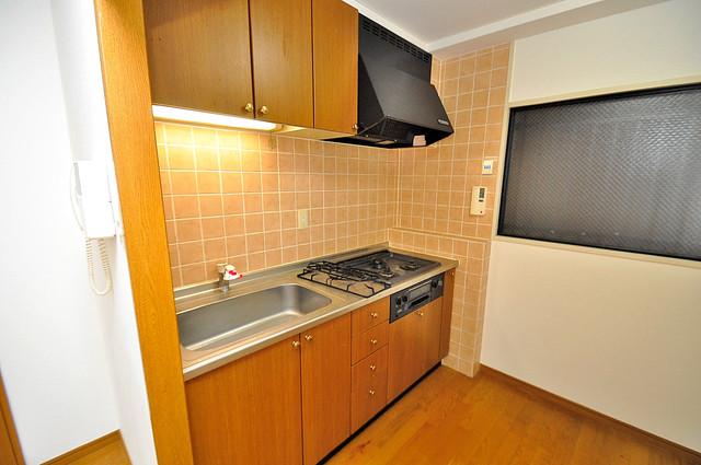 トリニティ加美東 大きなキッチンはお料理の時間を楽しくしてくれます。
