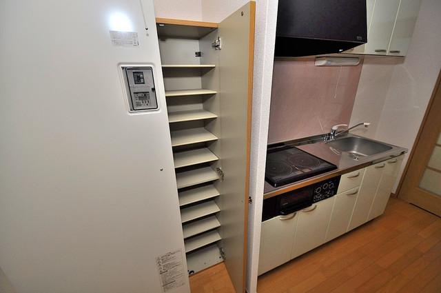 新深江池田マンション もちろん収納スペースも確保。お部屋がスッキリ片付きますね。