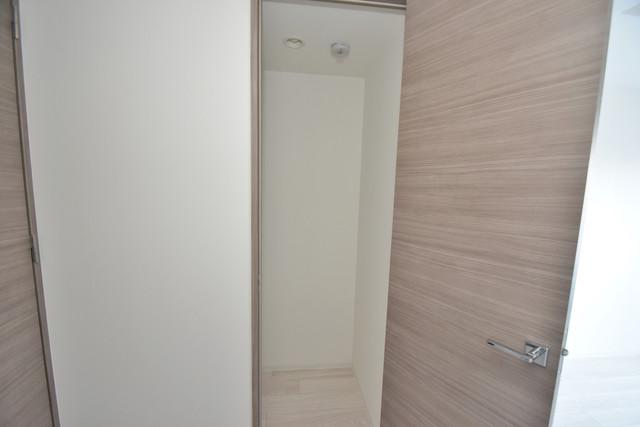 レジュールアッシュOSAKA今里駅前 もちろん収納スペースも確保。いたれりつくせりのお部屋です。