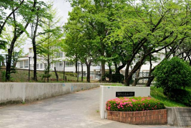 スペリオールパレス[周辺施設]小学校