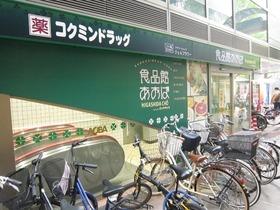 https://image.rentersnet.jp/79985276-ce09-461f-98a7-c115212b82ac_property_picture_962_large.jpg_cap_コクミンドラッグ川崎パレール店