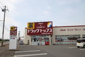 https://image.rentersnet.jp/7a086a1b-4e56-4838-9e64-77ca819e0d8a_property_picture_955_large.jpg_cap_ドラッグ・トップス舟入店