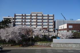 https://image.rentersnet.jp/7aecd83c614ff1bc60e062f027ae5ffa_property_picture_2871_large.jpg_cap_国立新潟大学歯学部