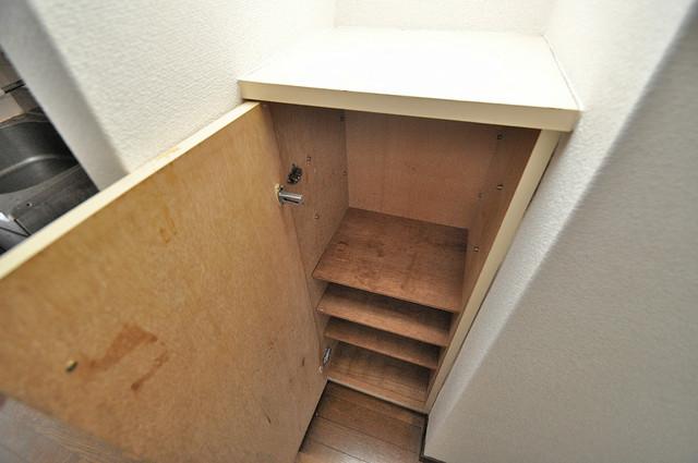 高井田ル・グラン 玄関にはコンパクトながらシューズボックスもありますよ。