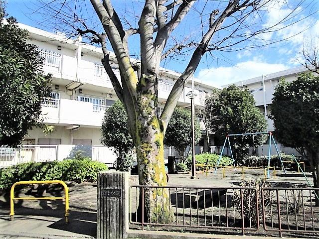 相模原昭和ビルの外観画像