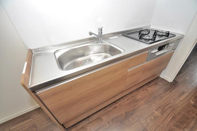シャーメゾンプランタン システムキッチンなので広々使えて、お料理もはかどります。