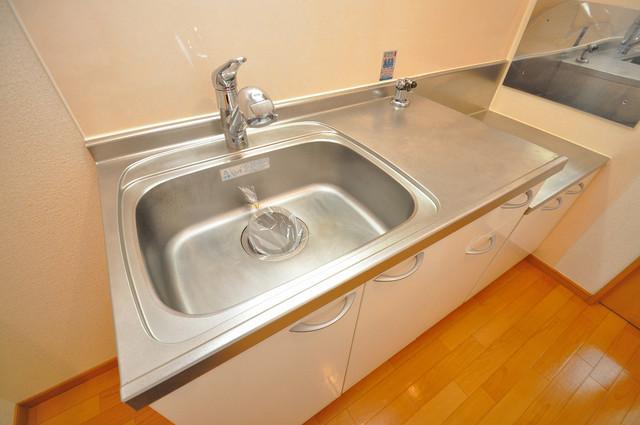 ベル フルール エヌ・エス 単身のお部屋には珍しい豪華なシステムキッチン完備です。