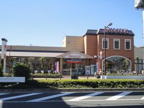ピーコックストア玉川上水店