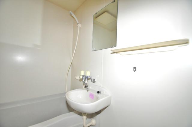 メゾン・ド・ソレイユ 小さいですが洗面台もあります。