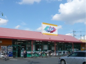 旬鮮食品館カズン草加店