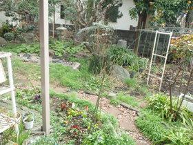 志村アパート植栽