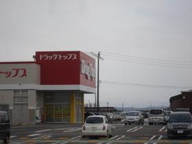 https://image.rentersnet.jp/84fd5e668555e13529f75683f4617a55_property_picture_1993_large.jpg_cap_ドラッグ・トップス白根店