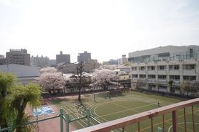 小学校の校庭が見えます。