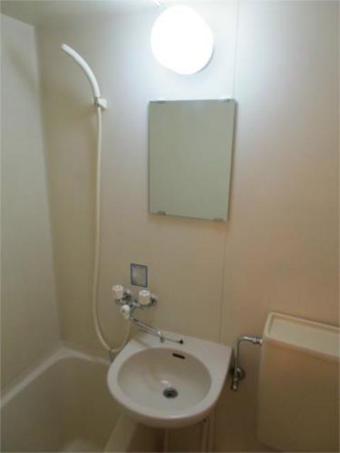 プチメゾン・ミカド洗面所