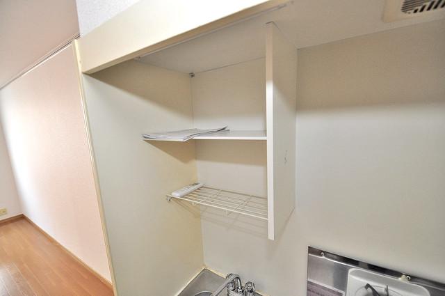 エステートピアナカタB棟 キッチン棚も付いていて食器収納も困りませんね。