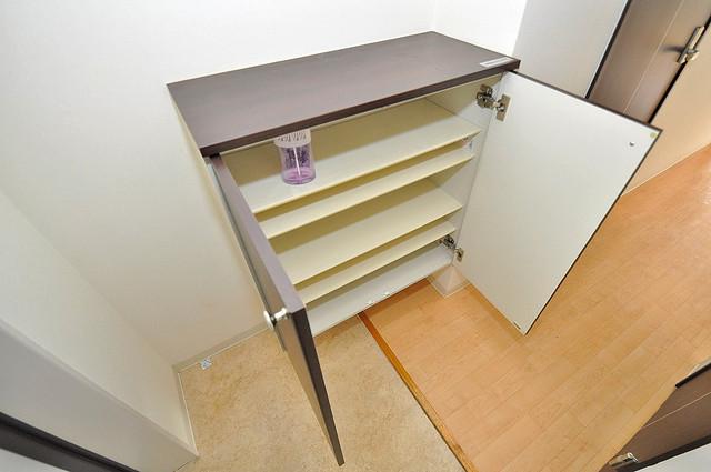 GRACE COURTⅡ 玄関にはオシャレなシューズボックスが設置されていますよ。